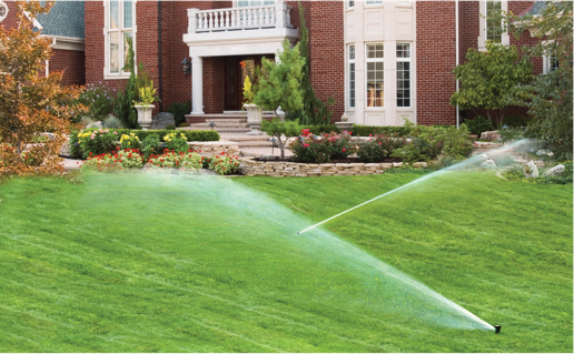 A Horticultural Approach to Irrigation