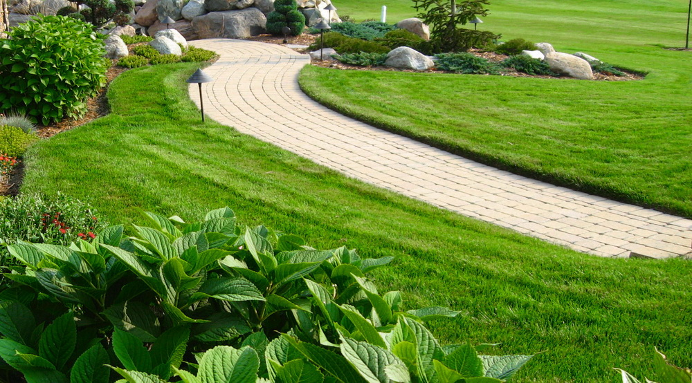 Proper Lawn Mowing and Watering: Keys to Healthy Turf