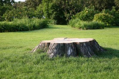 cutdowntree