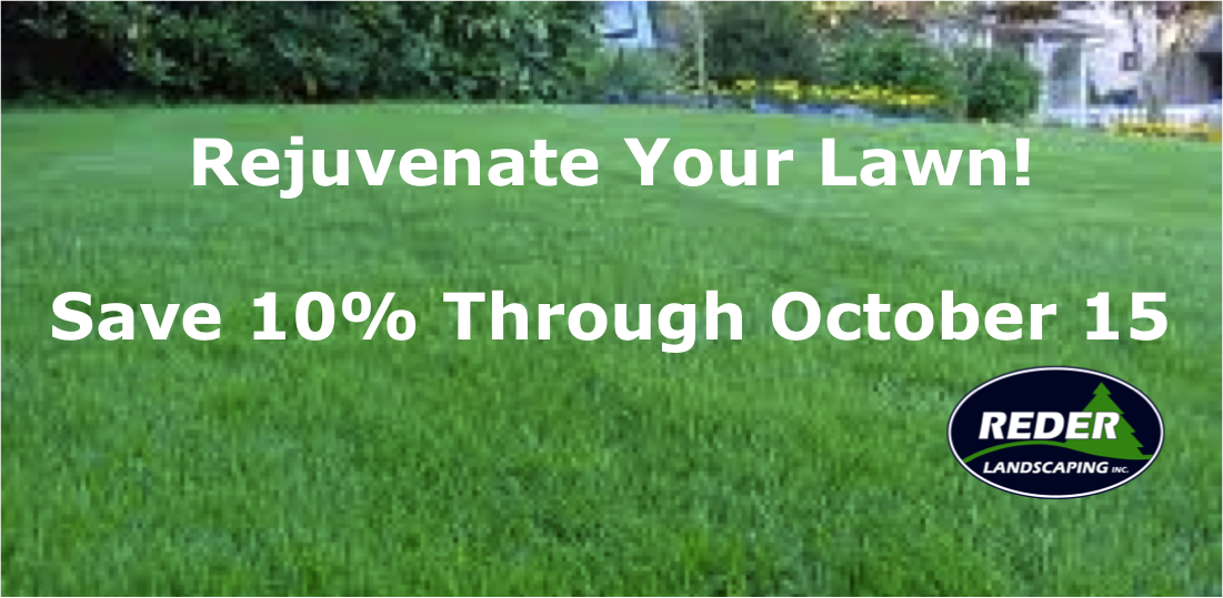 Rejuvenate Your Lawn Promo