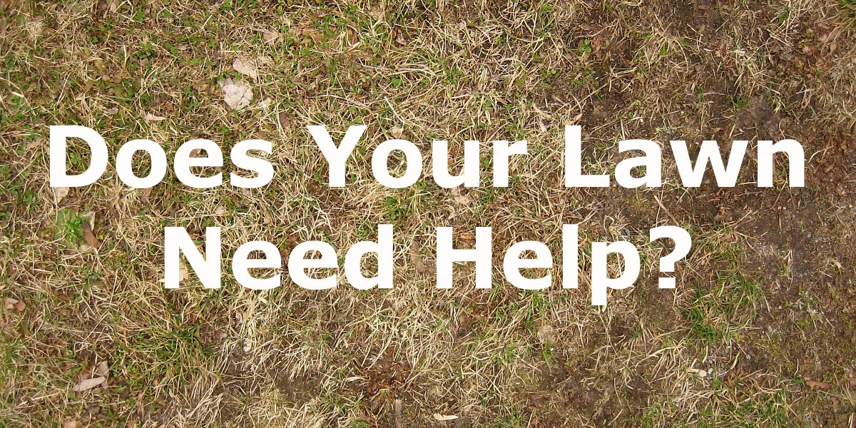 NOW is the Time to Act if You're Serious About Improving Your Lawn!!!