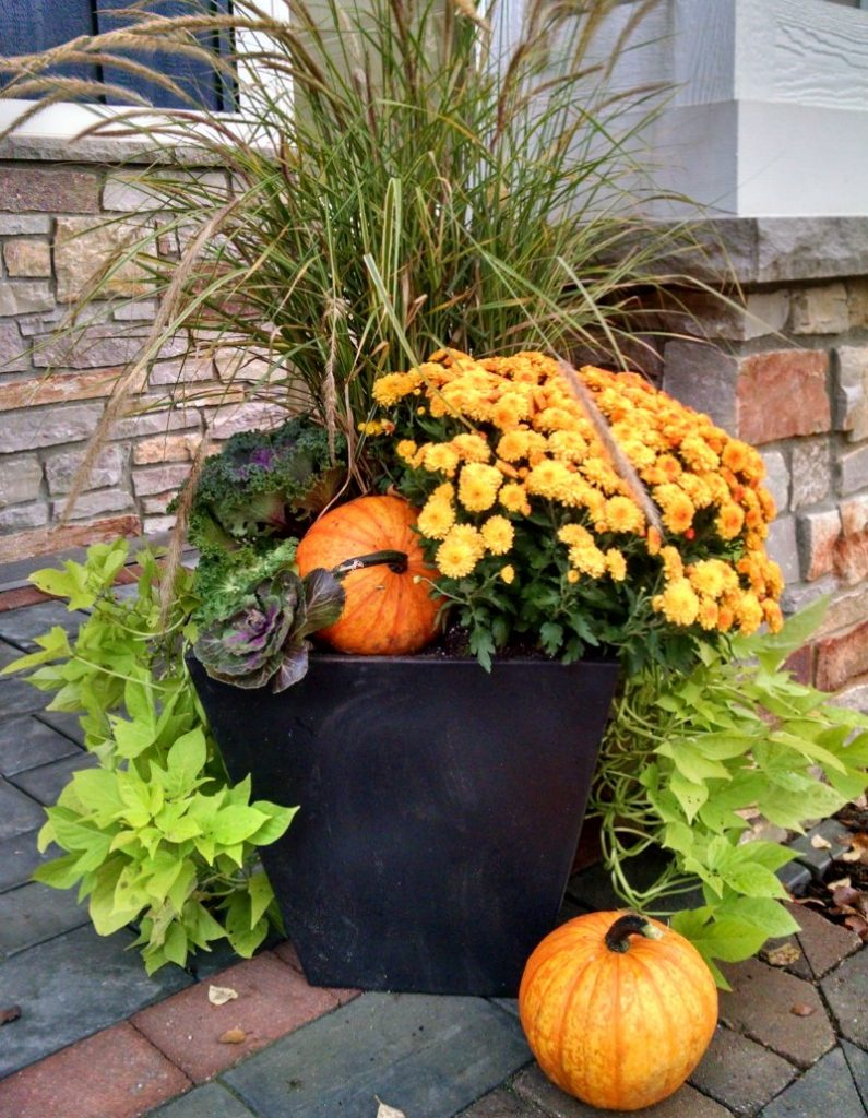 add seasonal color with fall container gardens reder landscaping