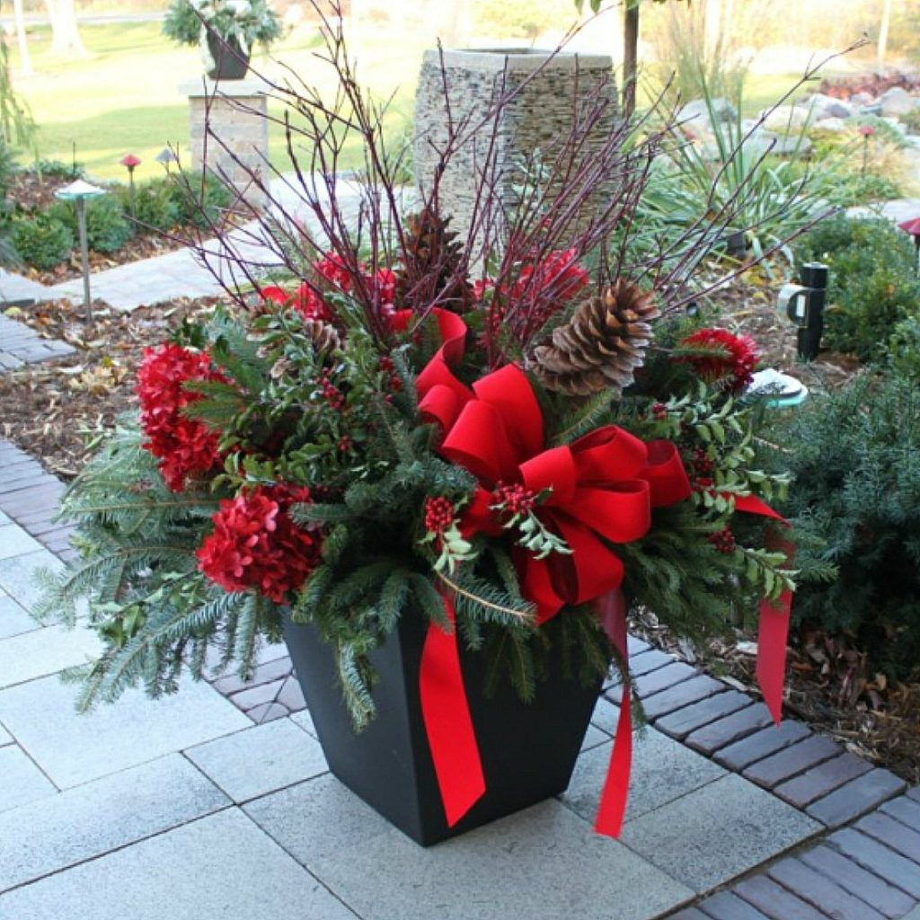 Holiday Traditions container gardens