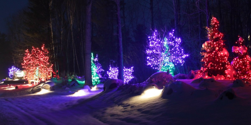 holiday-lighting-reder-landscaping-6